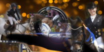 Sportfotografie, Pferdesportfotografie, Equestrian Sports