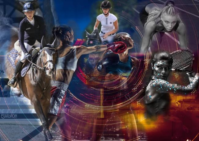Sportfotografie, Pferdesportfotografie, Produktfotografie