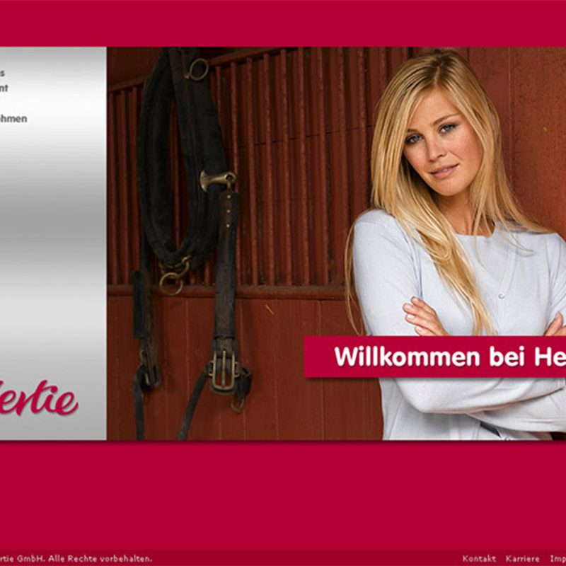 Hertie   Interimswebsite