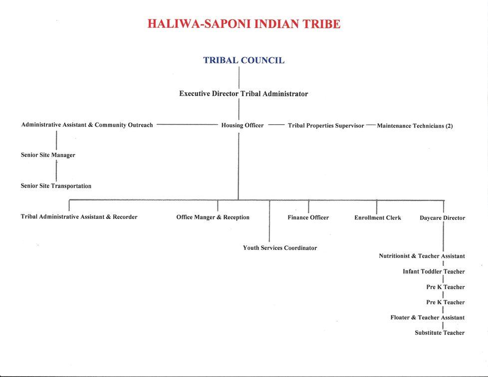 Tribal Council Organizational Chart